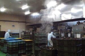 熱処理(蒸し)工程